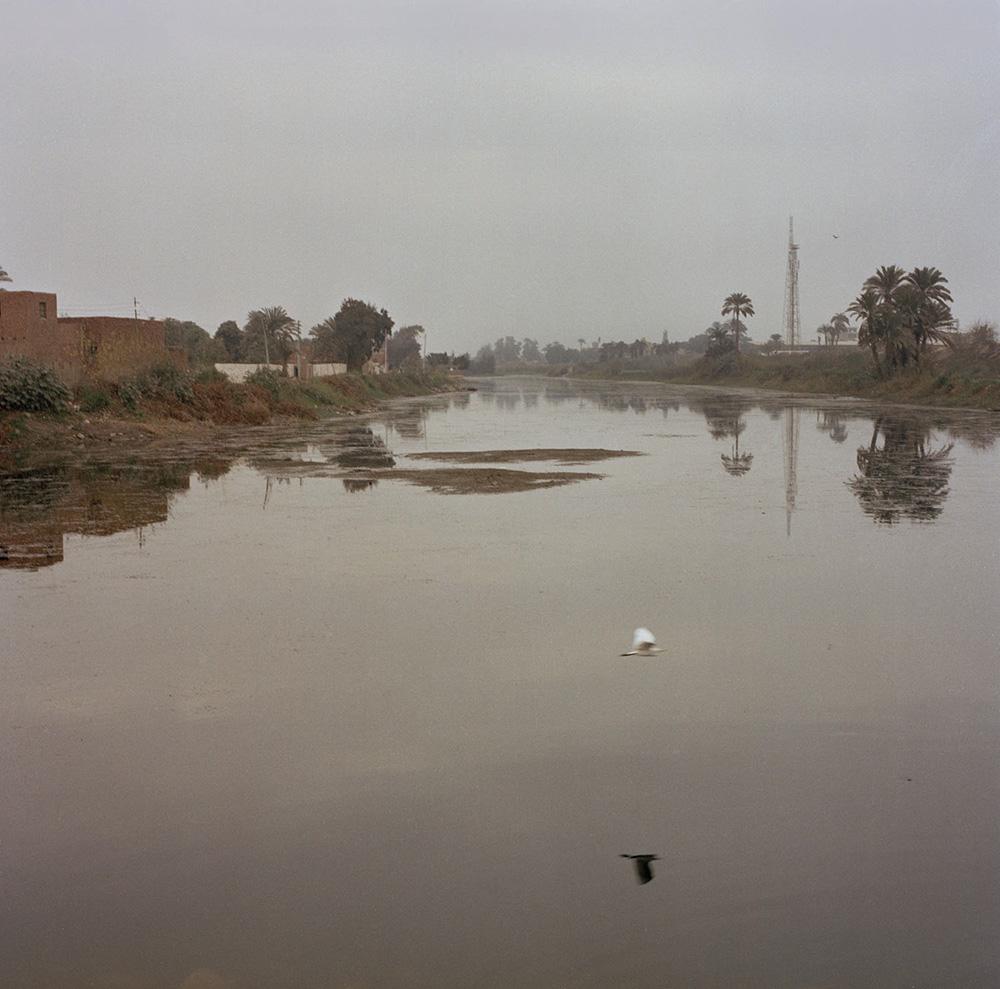 El Dessamy, Egitto. 2012 Il Nilo.