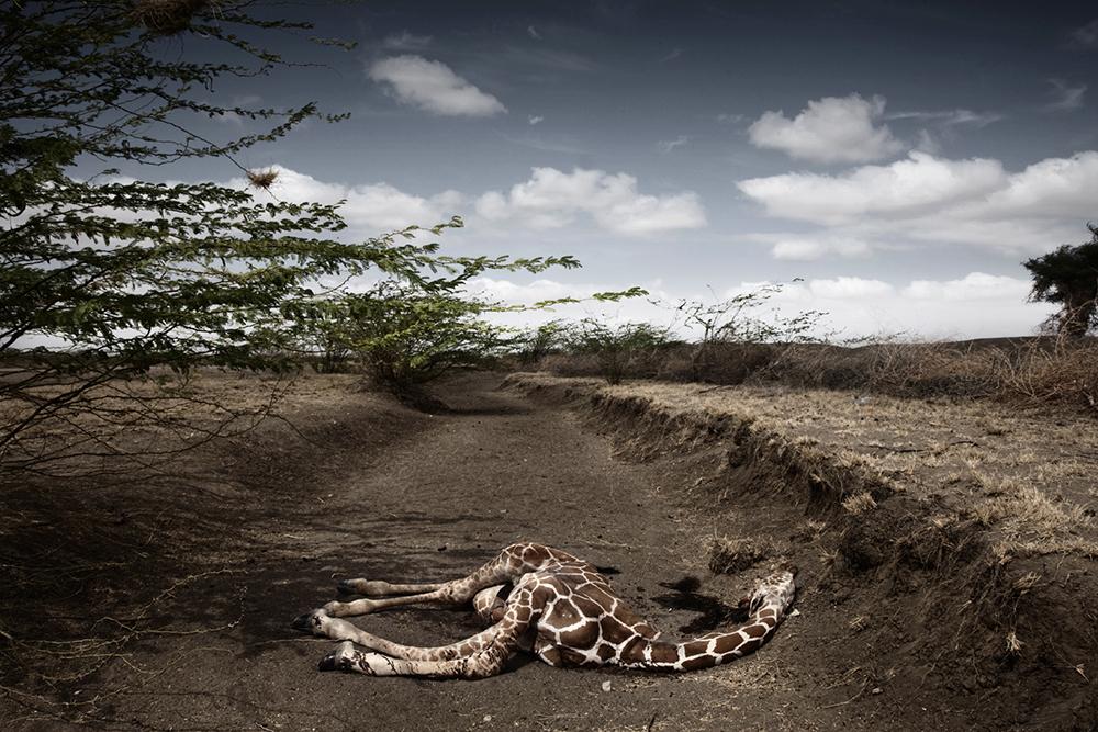 T.I.A. - Kenya. © Stefano De Luigi