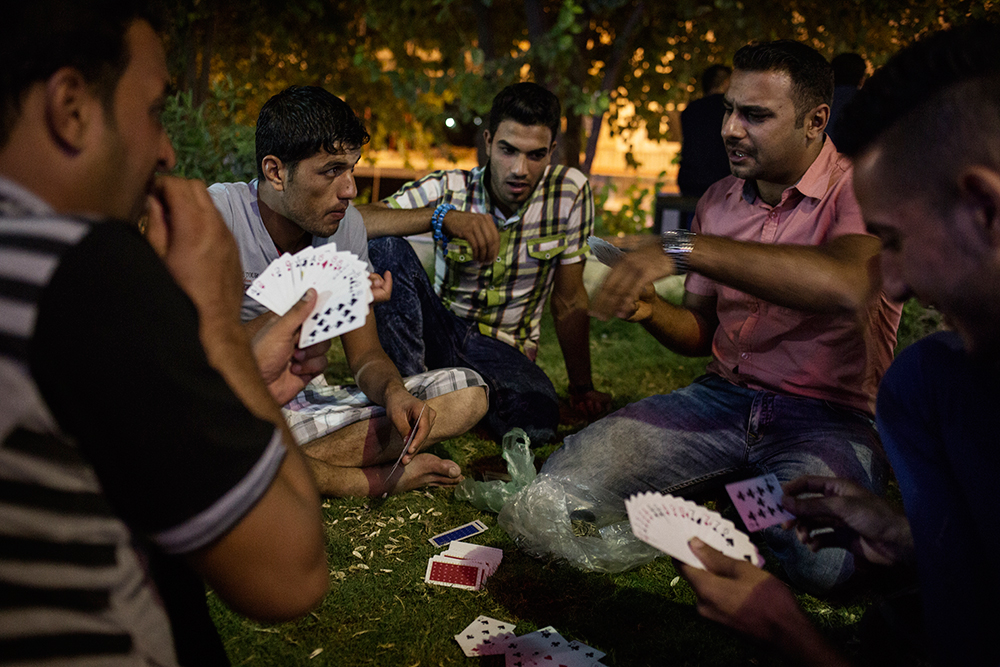 29/08/15. Shaqlawa, Iraq. - A group of young displaced people from Al Anbar province play cards in a garden at the centre of the bazar where they meet regularly at the end of each day. © Dario Bosio/Metrography