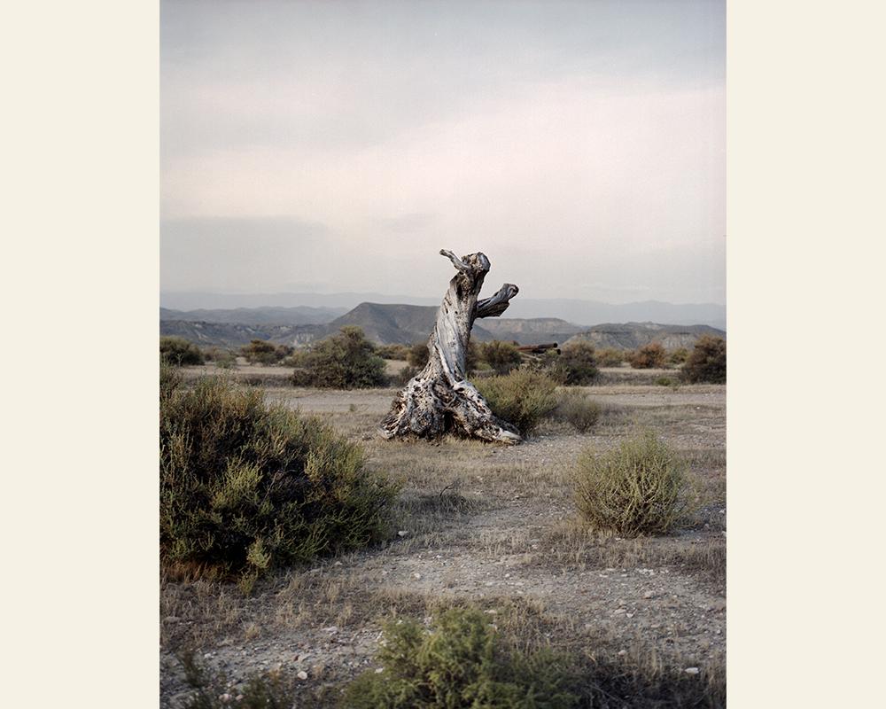 Dreaming Leone, Tabernas Desert, Almeria, Spain, November 2011. © Alvaro Deprit