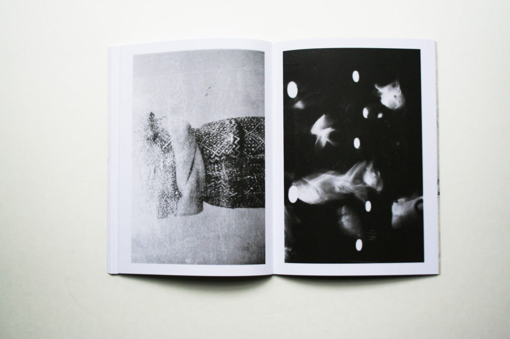 Pagine da L'unghia del leone, di Aminta Pierri.